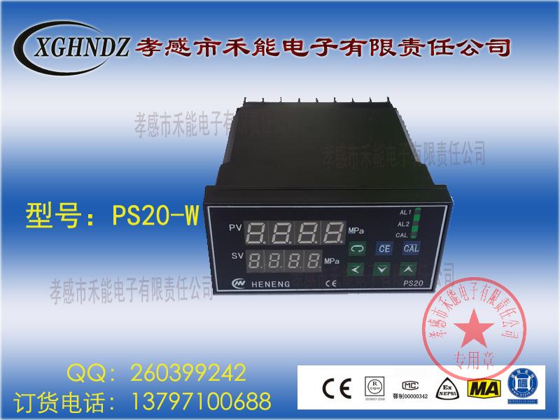 PS20-W-50MPa-48×96贝博手机版ballbet压力贝博APP体育官网仪表